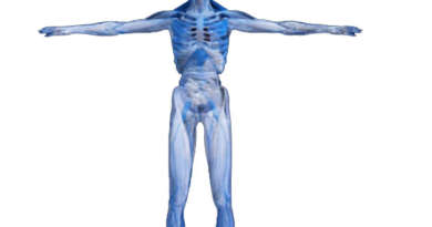 Do you know about human body secrets?